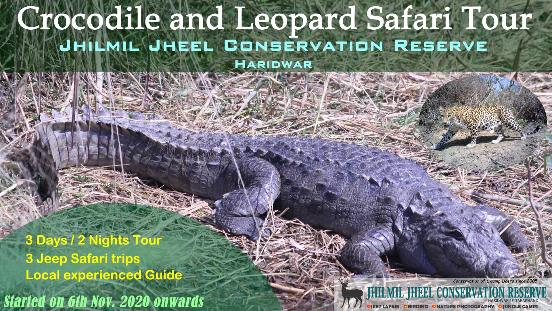 Crocodile Safari Tour